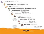 InSight Profile of InSight entry, descent and landing events.jpg