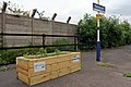 Incredible Edible Salford, Patricroft railway station (geograph 4004260).jpg