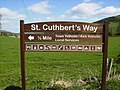 Information board on the St.Cuthbert's Way - geograph.org.uk - 409942.jpg