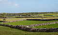 Inishmicatreer Pastures and Monastic Site 2010 09 14.jpg