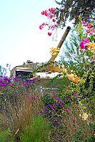 Israel-04620 - Latrun Tank (32820743354).jpg