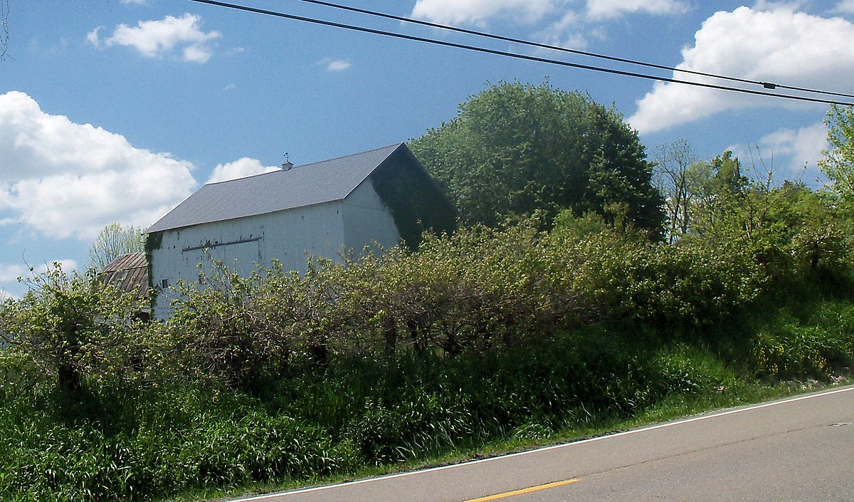 Ohio holmes county nashville - Ohio Holmes County Nashville 57