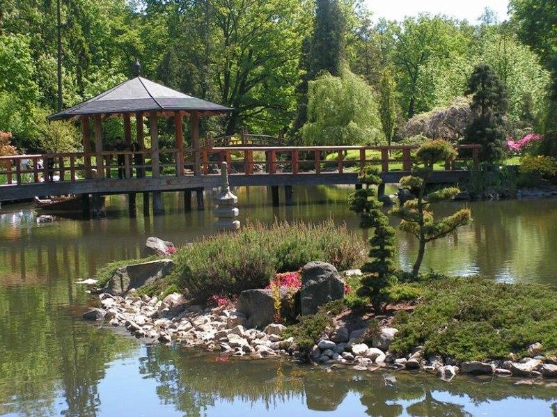 Wysepka z drzewkami bonsai i drewniany most (w tle)