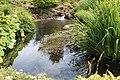 Jardin Botanique Royal Édimbourg 31.jpg