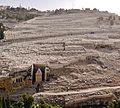 Jerusalem Blick vom Tempelberg auf den Jüdischen Friedhof am Ölberg 1.JPG