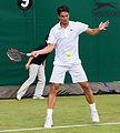 Jesse Huta Galung 6, 2015 Wimbledon Qualifying - Diliff.jpg