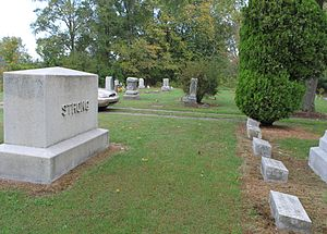 John Strong (Michigan politician) - Strong family gravesite. John Strong's headstone is at the end of the row directly underneath an evergreen tree.