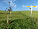 Jubiläumsweg Bodenseekreis - Treffen der Wegewarte 2013 2045.JPG