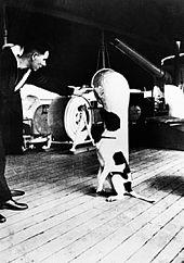 Собака сидит на палубе корабля и разговаривает с мужчиной в военной форме.