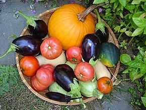 Bucket com beringelas, tomates e abóbora