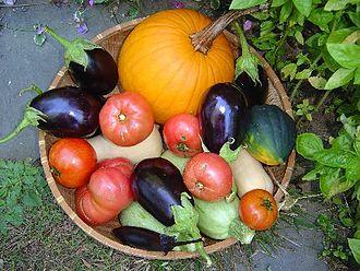 Agroecology - Image: Juliesvegetables