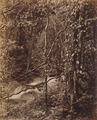 KITLV 92135 - Unknown - Waterfall at Coonoor in India - Around 1870.tif