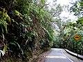 Kinabalu Park, Ranau, Sabah, Malaysia - panoramio.jpg