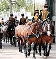 King's Troop Royal Horse Artillery (17304147899).jpg