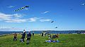 Kites Bug Light Park.JPG