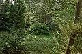 Konstancin Sapieżanka ogród.jpg