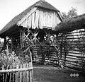 Kozolec- toplič z repom, pri Tratnik, Vino 1948.jpg