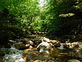 Kuchinashi Valley.jpg
