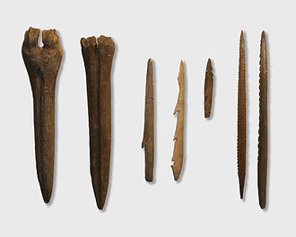 History of Estonia - Tools made by Kunda culture, the Estonian History Museum