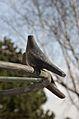 Kurpark Oberlaa 11 - Papagenobrunnen detail.jpg