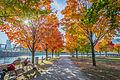 L'automne au Vieux-Port de Montréal (15440234816).jpg