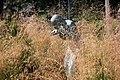 La Nymphe dans les hautes herbes (rond-point) LAUW - panoramio.jpg