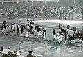 La finale du 800 mètres des Jeux olympiques de 1912.jpg