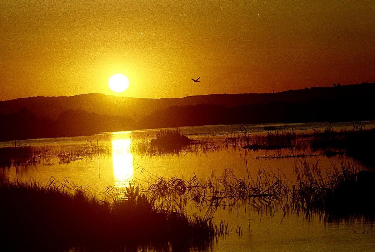 Ladik Gölü Vikipedi