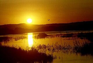 Ladik Lake
