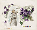 Lady Standing in the Archway Holding Violets (Boston Public Library).jpg