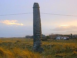 Mornington, County Meath - Lady's Finger