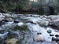 Lake Champlain Fish and Wildlife Resource Office-Great Brook (5727517656).jpg