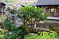 Lan Su Chinese Garden - Portland, Oregon - DSC01308.jpg