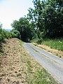 Lane leading to A170 near Ebberston - geograph.org.uk - 196177.jpg