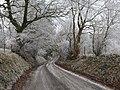 Lane near Ratlinghope - geograph.org.uk - 1113783.jpg