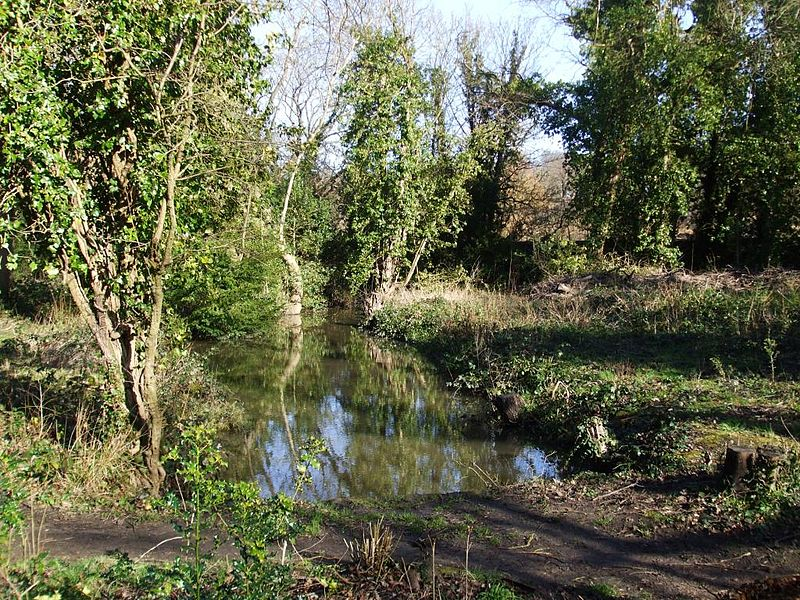 File:Latchmere Stream - Ham Woods, Ham Common 20140215.jpg