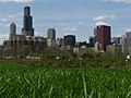 Laying in the grass, looking at the Chicago skyline (3519256953).jpg
