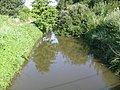 Le riveau du Châta - panoramio.jpg