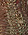 Left detail, La fille du Cid - Upper and lower cover and spine (c151e11) (cropped).jpg
