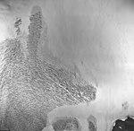 Lemon Creek Glacier, mountain glacier with firn line, September 16, 1966 (GLACIERS 6002).jpg