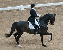 "Leslie Morse, dressage rider from the United States, with the Swedish Warmblood stallion ""Tip Top"", World Cup Final 2007.jpg"