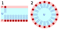 Lipid bilayer and micelle.svg
