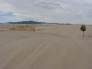 Millard County, Utah - Image: Little Sahara By Phil Konstantin
