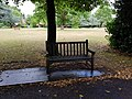 Long shot of the bench (OpenBenches 8054-1).jpg