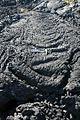 Lost Jim Lava Flow (4728641178).jpg