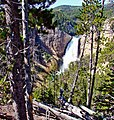 Lower Falls, Yellowstone River 8-11 (16324237536).jpg