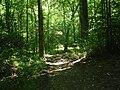 Lumberwoods.JPG