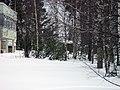 Lyovintsy, Kirovskaya oblast', Russia, 612079 - panoramio (69).jpg