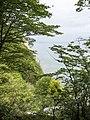 Møns Klint - panoramio (3).jpg