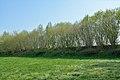 Mühlenbarbek, Reste der Bahnstrecke Wrist–Itzehoe NIK 5051.JPG